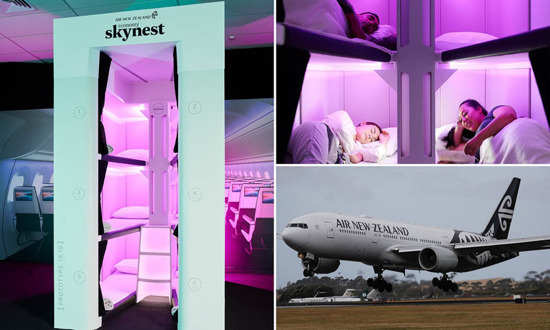 Проект Air New Zealand Skynest