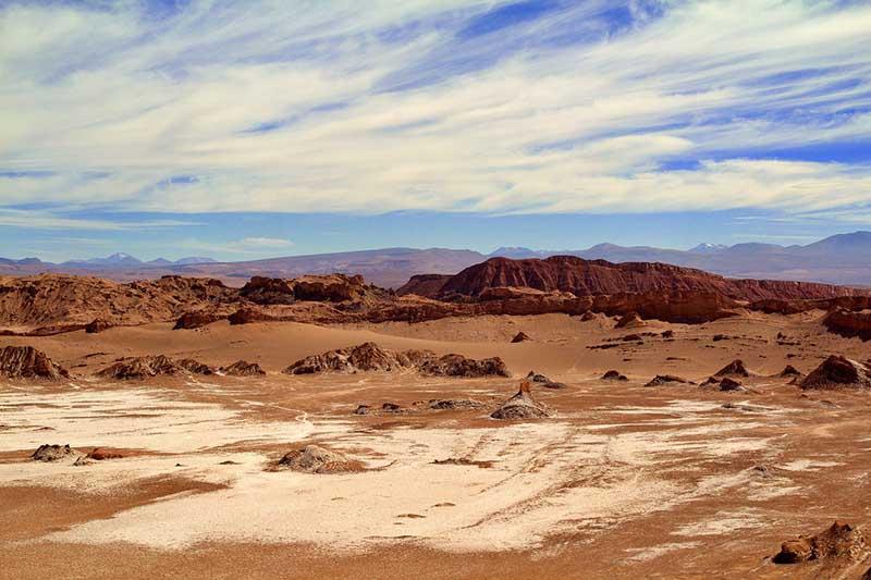 Как возможна жизнь в пустыне Атакаме