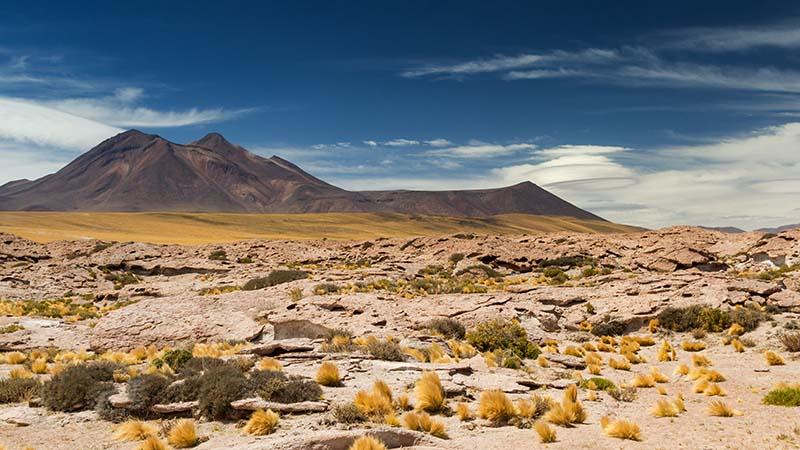 Среднегодовая норма осадков в Атакаме составляет всего один миллиметр