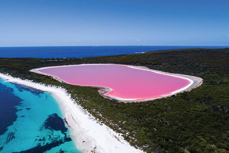 Розовое озеро Озеро Ретба