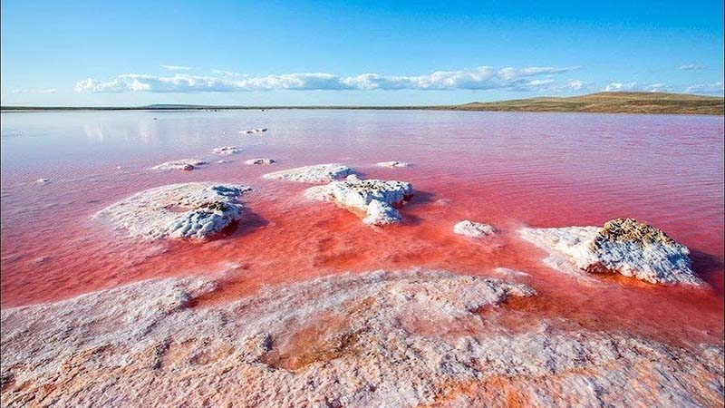 Розовый цвет озера