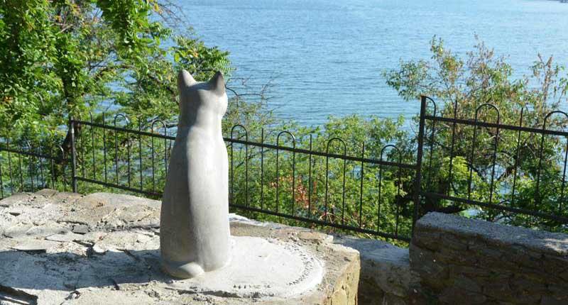 Гурзуфская кошка в Крыму