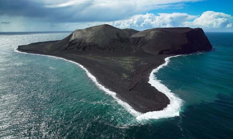 Как попадает растительность на необитаемые острова