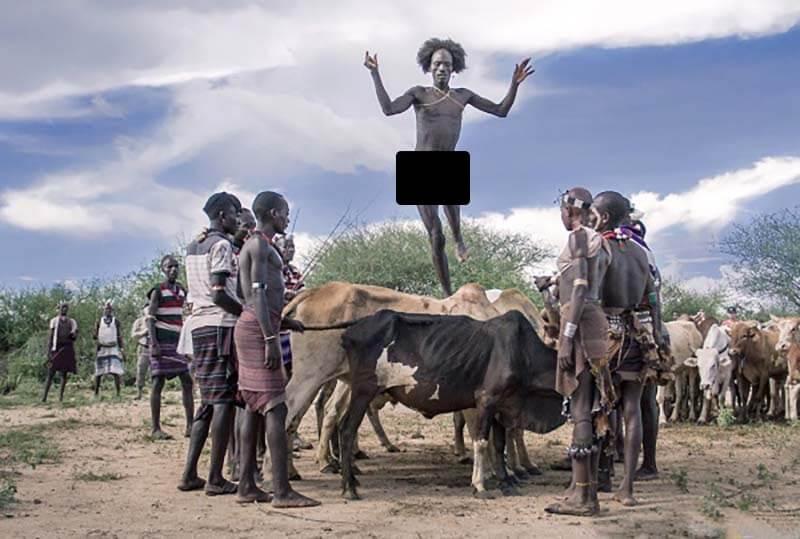 Бег по спине быка