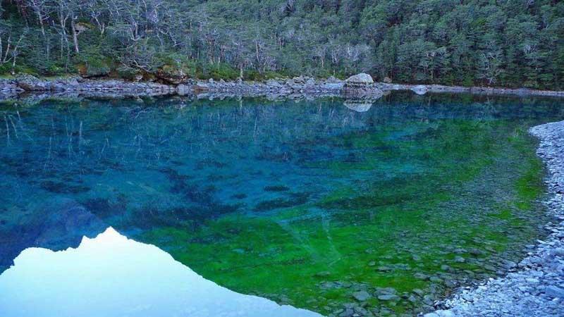 Удивительно и чистое озеро в Новой Зеландии, в котором не разрешается купаться