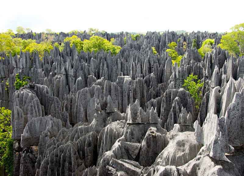 «Каменные джунгли»: уникальное место для смелых людей