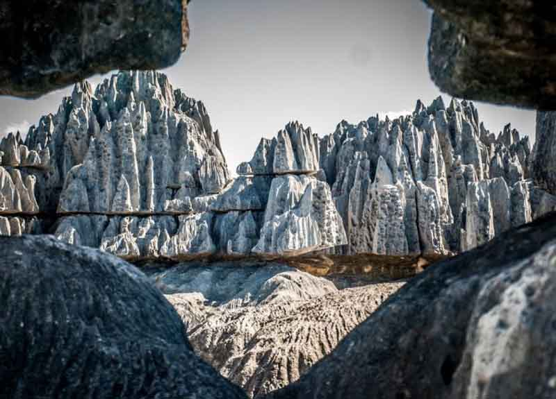 У подножья каменных «деревьев» располагаются каньоны, ущелья, пещеры.