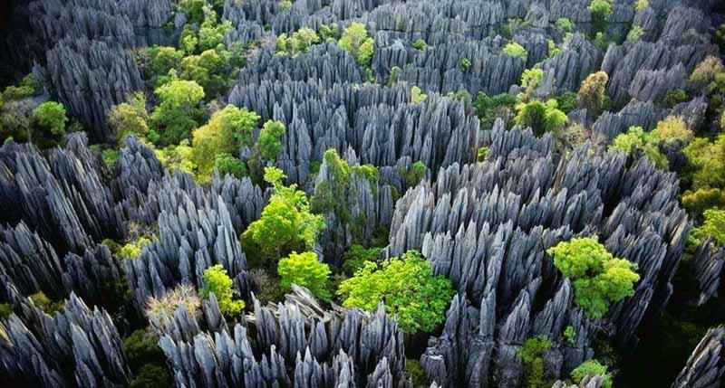«Каменный лес» — часть природного заповедника «Цинжи де Бемараха»