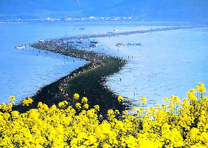 мостом, соединяющим два острова — Чиндо и Модо.