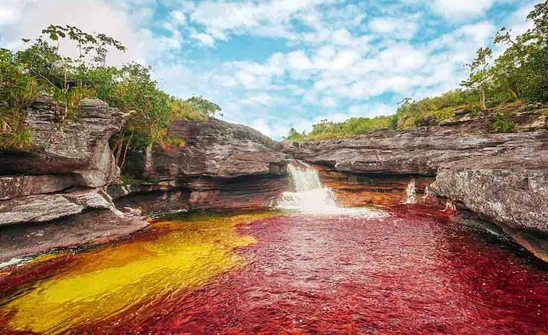 Разноцветная река Каньо Кристалес в Колумбии
