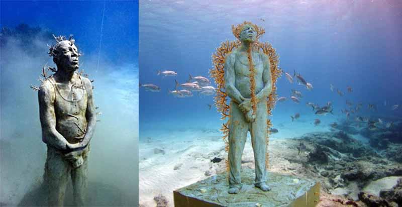 Джейсон де Кайрес Тейлор сам любитель понырять в акваланге