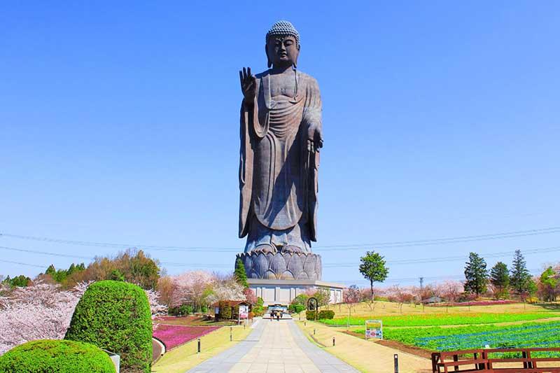 Статуя Будды Усику Дайбуцу в Японии