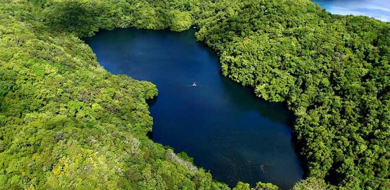 водоем так и назвали — «Озеро Медуз».