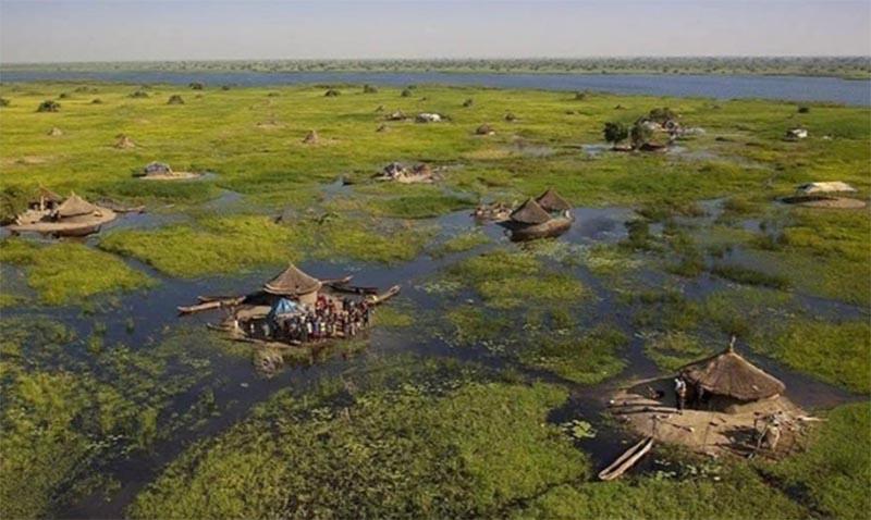 Дома посреди болота Судд: как живет африканское племя?