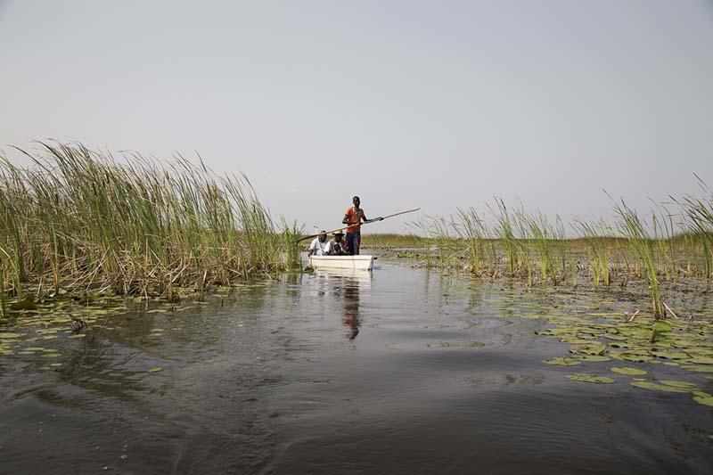 На этом болоте проживает племя нилотов.