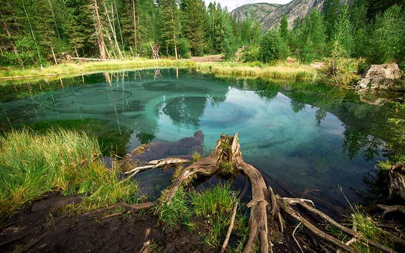 Среди тысяч озер, расположенных на территории Горного Алтая, туристы выделяют одно особенное лесное озеро, скрывающееся в глубине тайги.