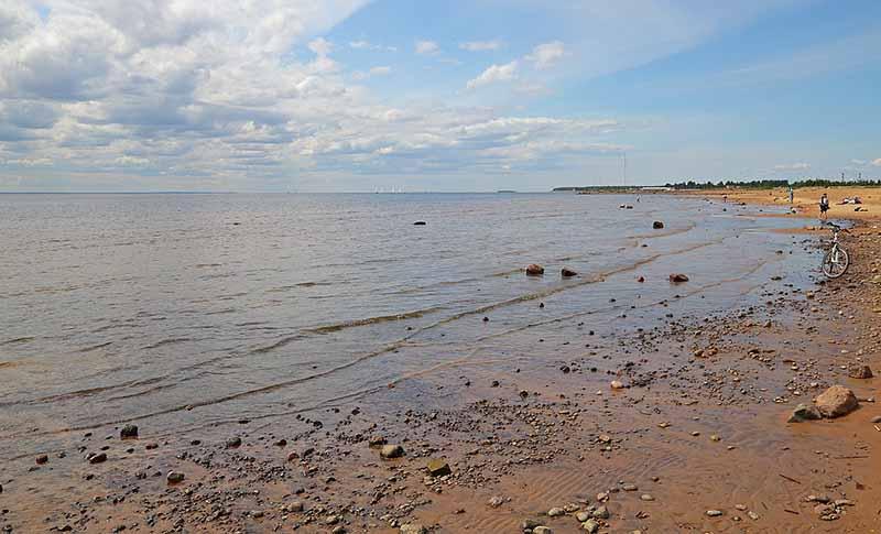 Почему не стоит купаться в Финском заливе