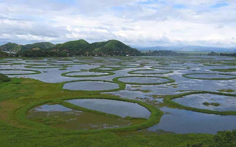Быстрый рост количества островов Пхумди ухудшают экологическую обстановку в регионе.