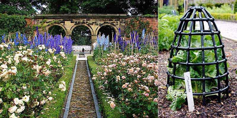 Сад с ядовитыми растениями располагается на территории английского замка Альнвик.