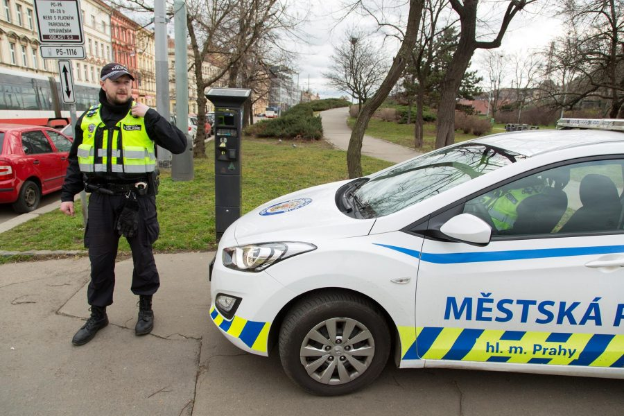 Полиция в Чехии
