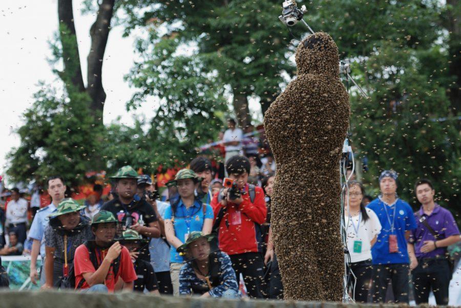 Конкурс с пчелами в Китае