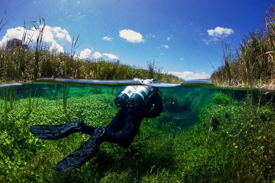Чистейшие австралийские пруды