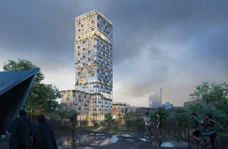 Проект деревянного небоскреба