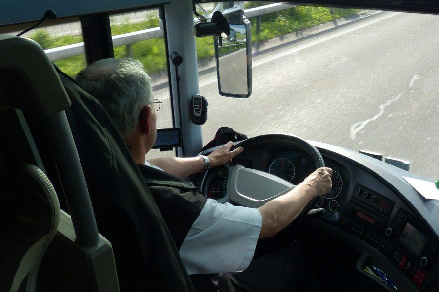 Водители автобусов и маршруток