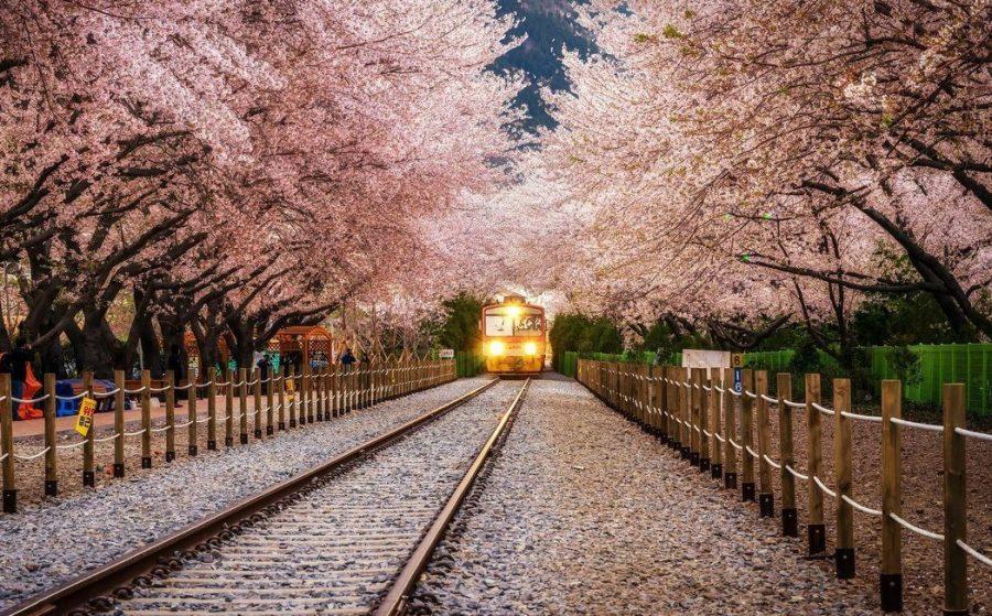 Железная дорога в японском саду