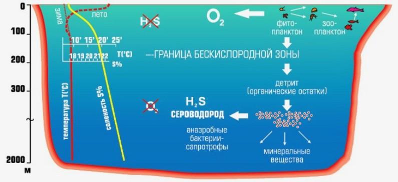 Схема Черного моря