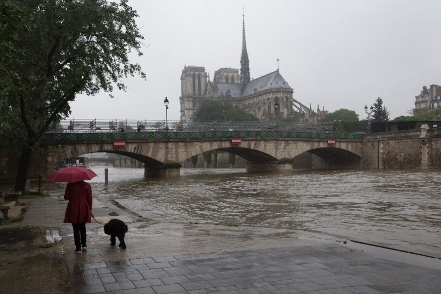 Париж город дождей
