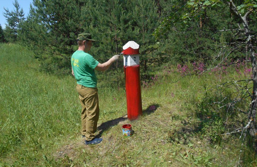 Красный столб в лесу