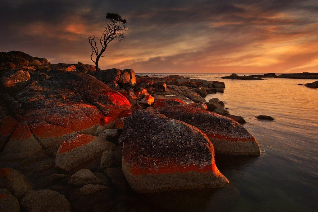 На берегу Тасмании Бухта Огней